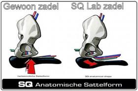 Zadel Race/Atb SQ Lab 611